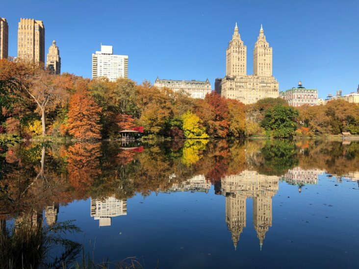 Autumn in Central Park. NYC