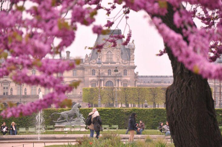 A Paris park in the springtime.